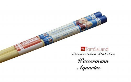 Twelve Constellations Chopsticks Aquarius